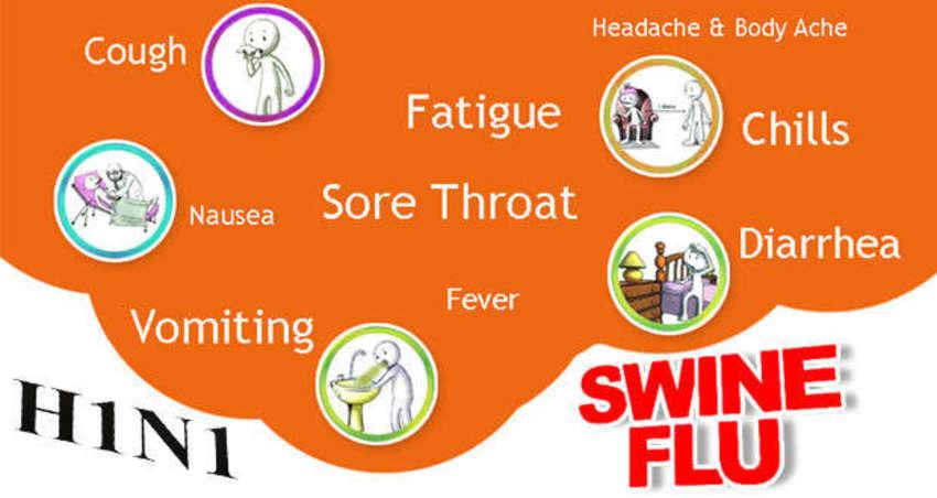 swine flu treatment in ayurveda
