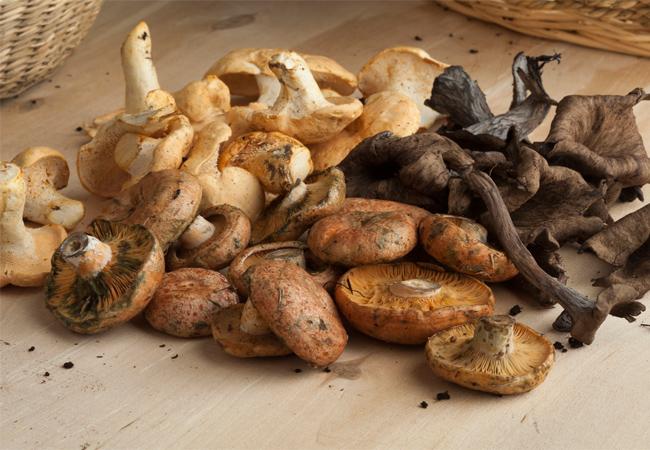 Foods Rich in Vanadium