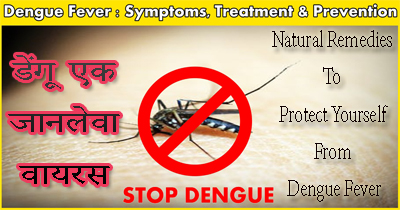 Ayurvedic Treatment of Dengue Fever