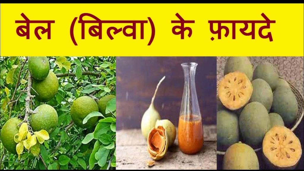 Health Benefits of Beal Fruit or wood apple