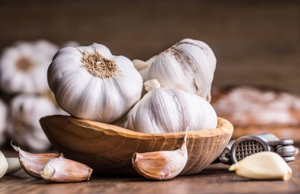 Ayurvedic properties of garlic
